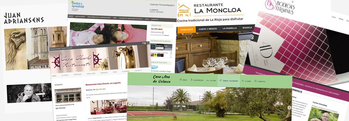 Diseño de páginas web en Logroño, La Rioja.