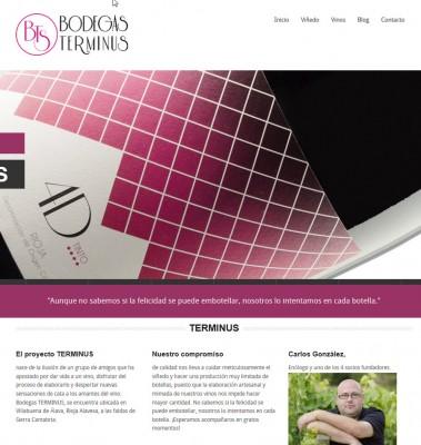 Diseño Páginas Web en Logroño