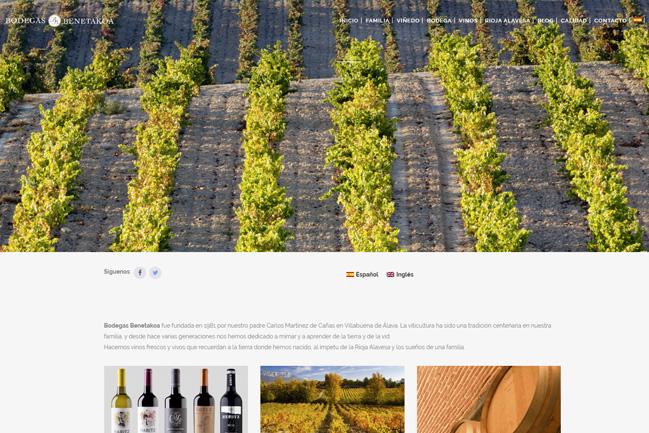 Diseño Páginas Web en Navarra